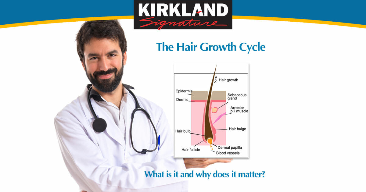 Hair Growth Stages and How Minoxidil Helps - MinxoidilUK OG02